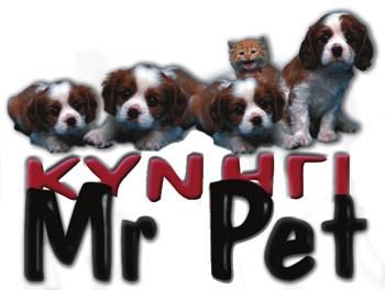 MrPet  - αξεσουάρ σκύλων